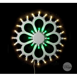 Daisy Flower Illumination