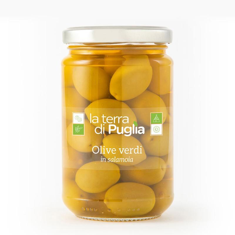 Grüne Oliven in Salzlake