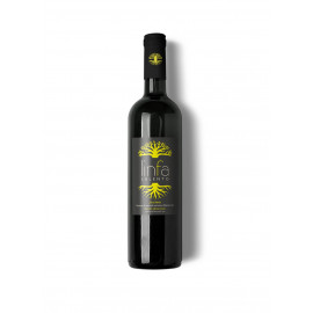 Zavirna, liqueur of corinoli or macerone