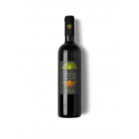 Vulia, liquore alle foglie di ulivo